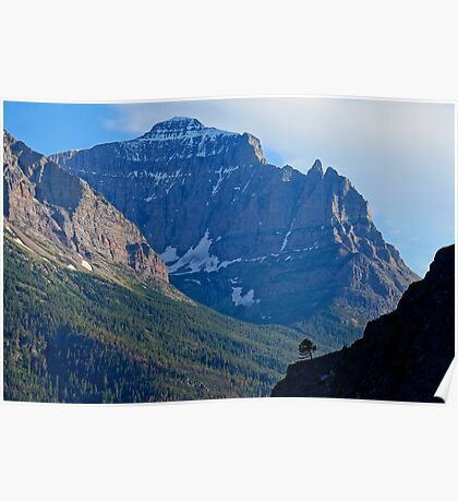 Mountain Majestic Poster