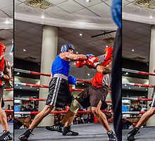 Wayne Knockout by Zoran Covic