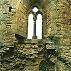 Easby Abbey by hans p olsen