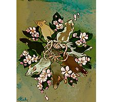 Dark Spring Rat King Photographic Print