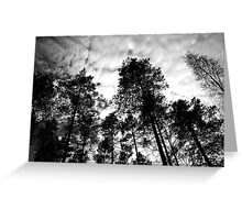 Through every forest Greeting Card