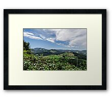 Nature beauty Framed Print