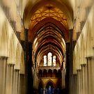 Salisbury Cathedral by LeRoyM