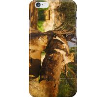 Athens Zoo - Lions iPhone Case/Skin