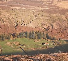Danby Dale ~ North Yorkshire by patrixpix
