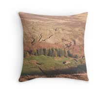 Danby Dale ~ North Yorkshire Throw Pillow
