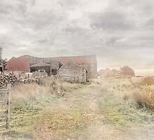 A Farm at Rudland ~ North Yorkshire by patrixpix