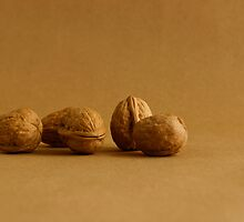 Walnuts Alone by Mark McKinney