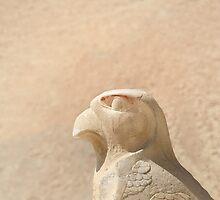 Bird of prey  by areyarey