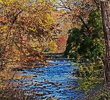 Fall Stream by GalleryThree