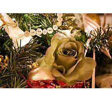 Christmas Flower Photographic Print
