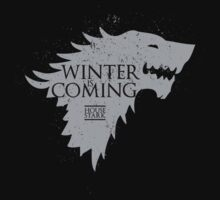 Winters is Coming by chiaraleonicom