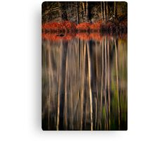 The Last Colors of Fall Canvas Print