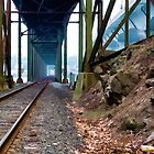 Down By the Tracks by Richard Bean