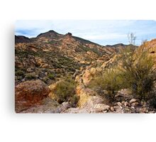 Dressed in Yellow Apache Trail Canvas Print