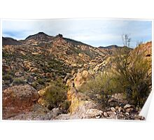 Dressed in Yellow Apache Trail Poster