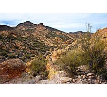 Dressed in Yellow Apache Trail Photographic Print