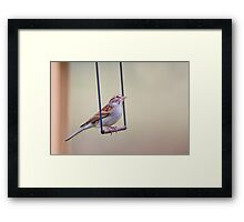Swinging Sparrow Framed Print
