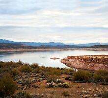 Apache Trail The Oasis by Lee Craig