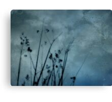 Seaside Storm Canvas Print