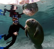 Young Girl with a Baby Manatee by Greg Amptman