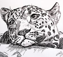 Leopard in Thought by Luke Verlinsky