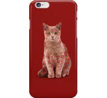 Funny Persian Cat iPhone Case/Skin