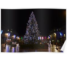 Christmas Tree in Dundee Poster
