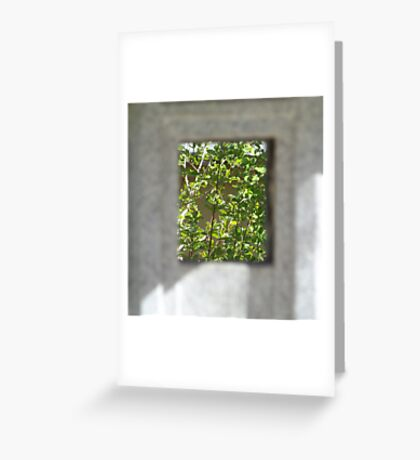 A view of trees Greeting Card