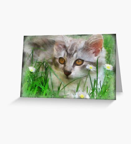 Adorable Neighborhood Kitten Greeting Card