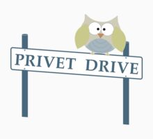 Number 4 Privet Drive by ssddesigns