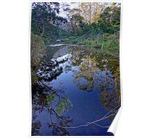 Lerderderg River Poster