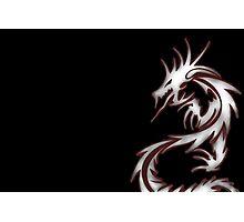 Dragon Lore  Photographic Print