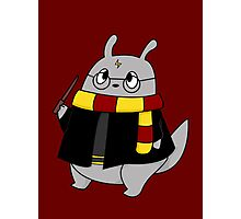 Harry Potter Totoro (Gryffindor) Photographic Print