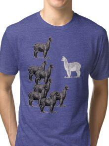 no black sheep, just a white llama Tri-blend T-Shirt