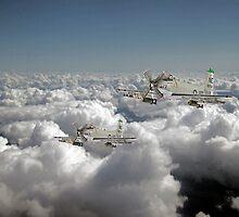 Douglas Skyraider by J Biggadike
