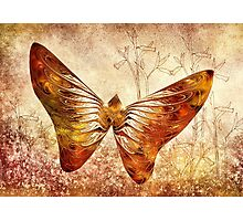 Butterfly Camouflage Photographic Print