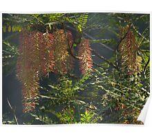 winter's weed - hierbajo en el invierno Poster
