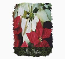 Mixed Color Poinsettias 2 Merry Christmas S6F1 One Piece - Long Sleeve