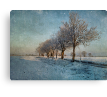 The Slow Freeze Canvas Print