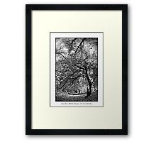 Dark Forces Will Be Unleashed Framed Print