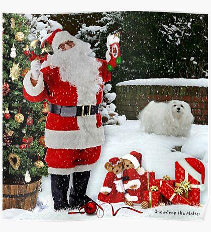 Snowdrop & Santa Poster