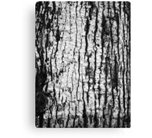 bark cracks // nature black and white Canvas Print