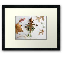 Acorn fairy Framed Print