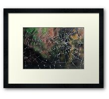 Web Droplets Framed Print