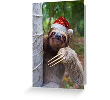 Christmas animal sloth wearing santa hat Greeting Card