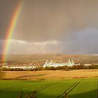 Reebok Rainbow by Paul Gibbons
