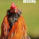 Chicken Calendar by nambroth