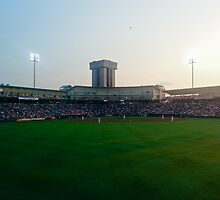 Hammons Field by hallyq14