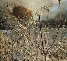 Winter in the Meadow by Sarah Jarrett